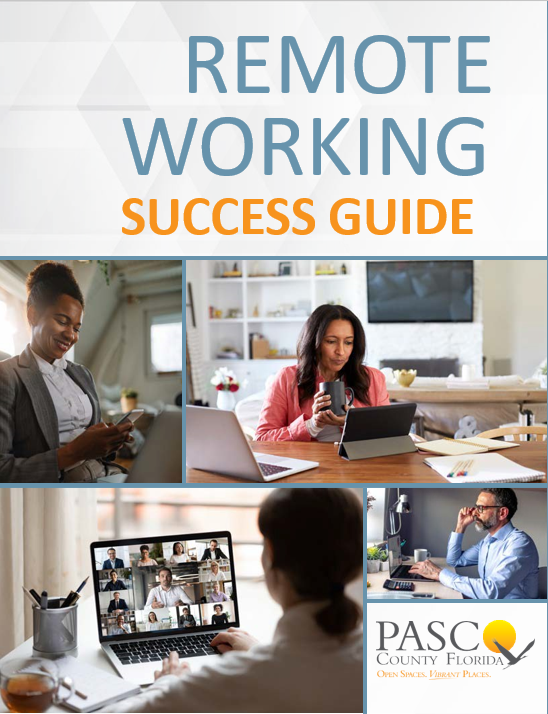 Remote Working Success Guide